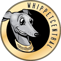 WhippetCentral